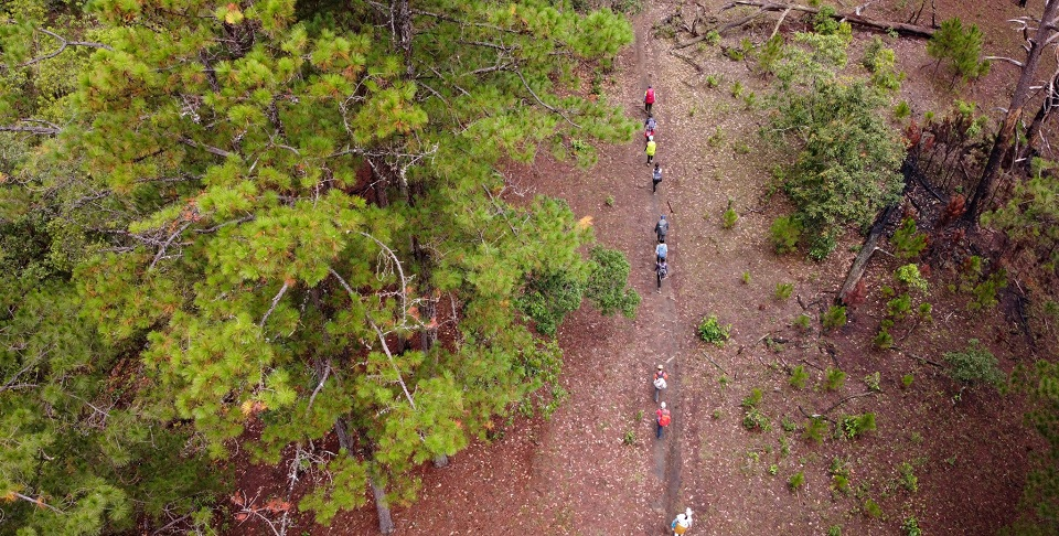 Đoàn người đi trekking được chụp từ trên cao