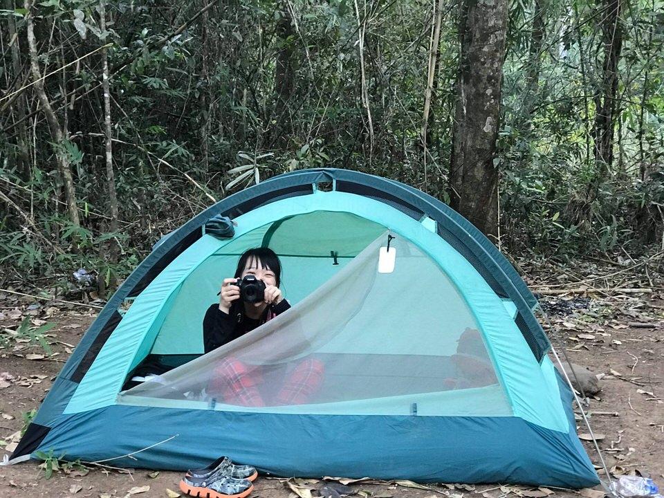 Dựng lều cắm trại ở trong rừng