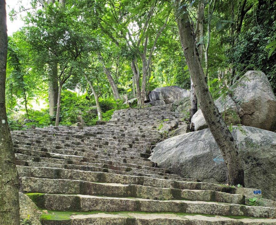 Những bậc thang leo núi dẫn lên trên đỉnh