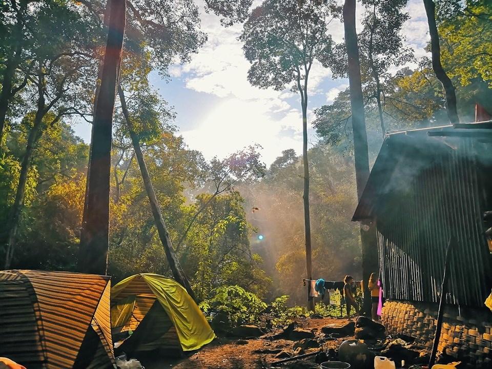 Dựng lều cắm trại ở bên trong rừng