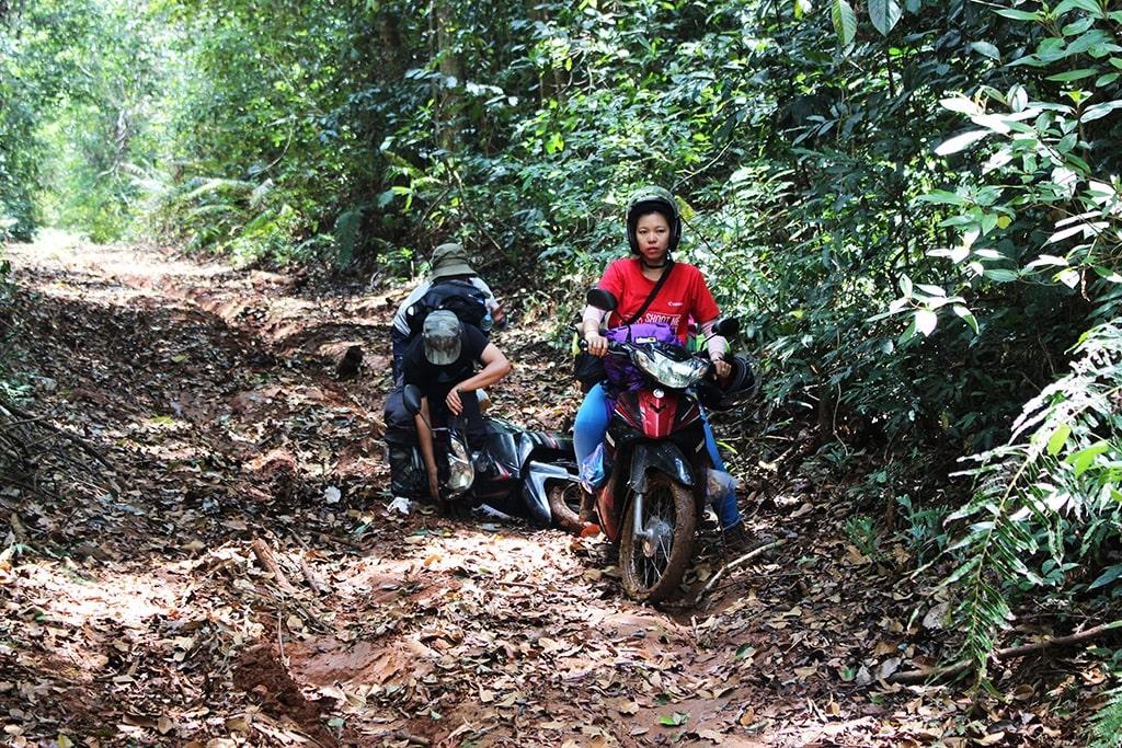 Đường đi xuyên rừng vô cùng khó khăn