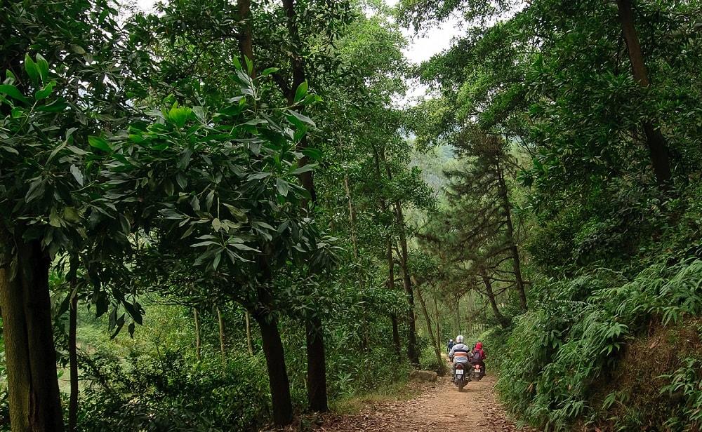 Đoạn đường đi vào chân núi có thể đi bằng xe máy dễ dàng