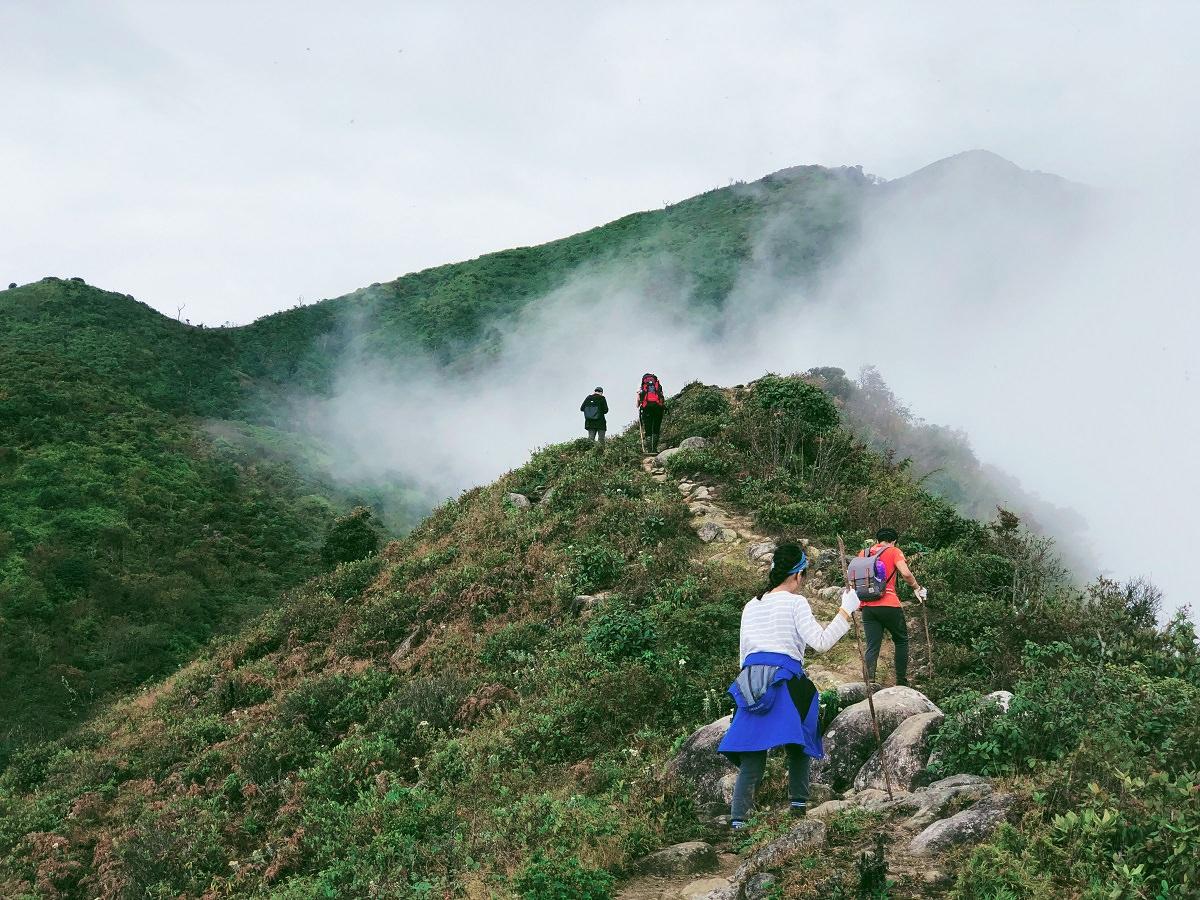 Con đường lên tới đỉnh Bạch Mộc Lương Tử