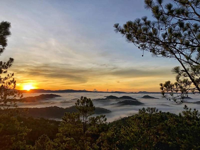 Khung cảnh bình minh trên đồi