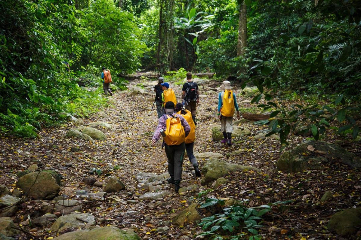 Hành trình trekking xuyên rừng rậm
